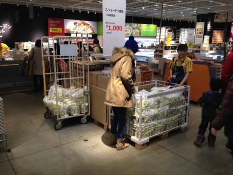 スウェーデンフード福袋売場